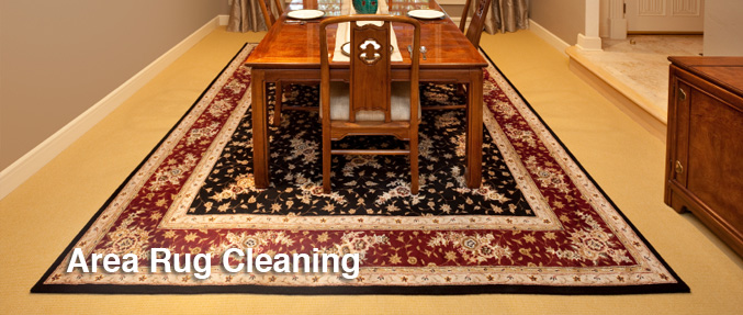 Oriental Area Rug Cleaning Minneapolis